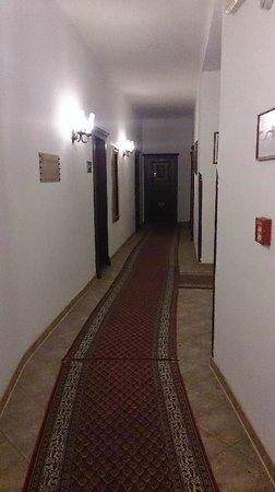 Hotel Ruze: 廊下