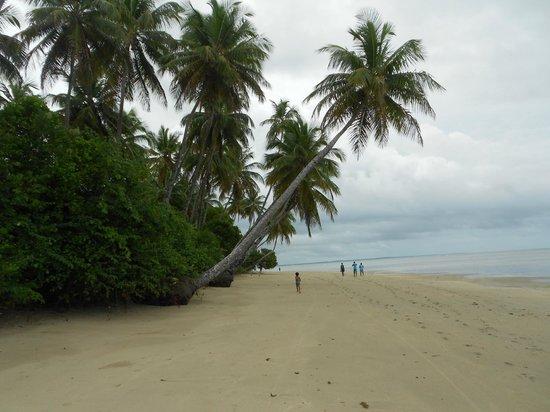 Morere : Praia em Moreré.
