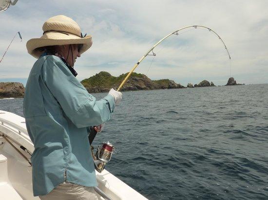 Sport Fish Panama Island Lodge: Joan working on a good fish