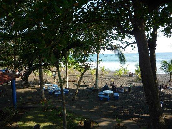 Hotel Fuego del Sol: View from room 20