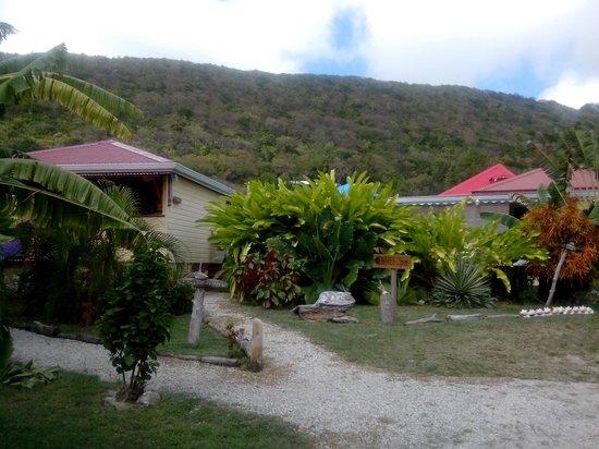 Les Gites Tit'Anse: vue jardin et gîte à gauche