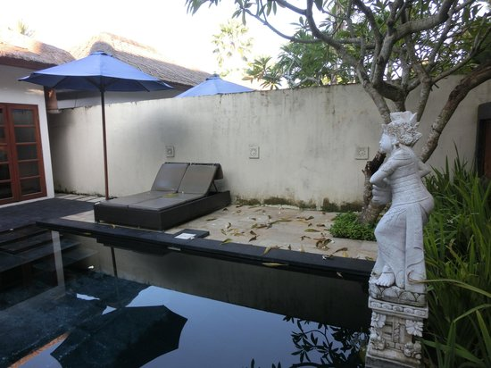 Balibaliku Beach Front Luxury Private Pool Villa: Poor Pool Condition - Fallen leaves and insects in the pool