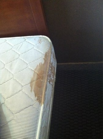 America's Best Value Inn: One of the stains on one of the mattresses
