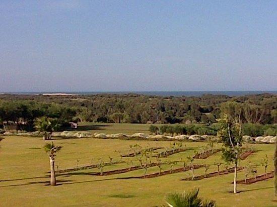Sofitel Essaouira Mogador Golf & Spa: Vue de notre chambre
