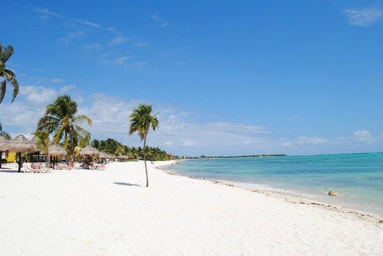 PavoReal Beach Resort Tulum: Spiaggia e mare!