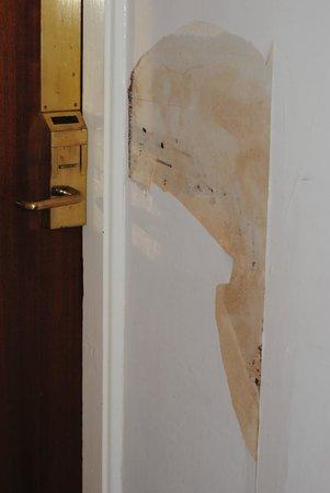Hylands Hotel: Couloir et de manière générale les murs dans l'hotel