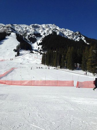 Mt. Norquay : Training area with part of Mount Norquay in the background...