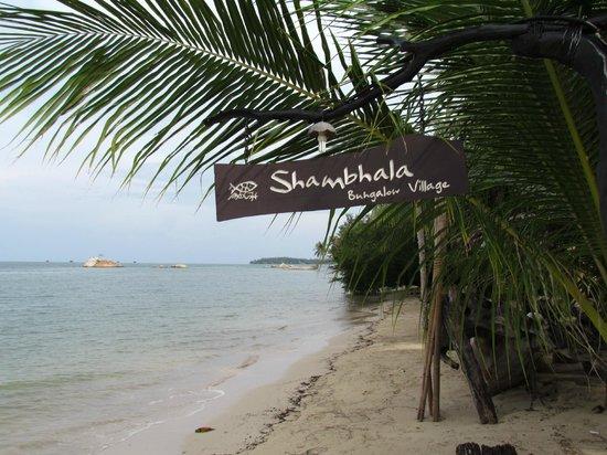 Shambhala Bungalow Village : ON y est