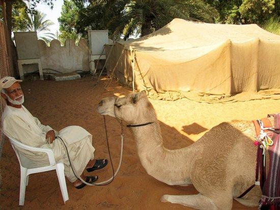 Heritage Village: Camel Rides