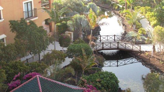Sheraton Fuerteventura Beach, Golf & Spa Resort: hotel garden area