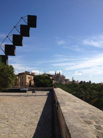 City Sightseeing Palma de Mallorca : Palma Catherdral