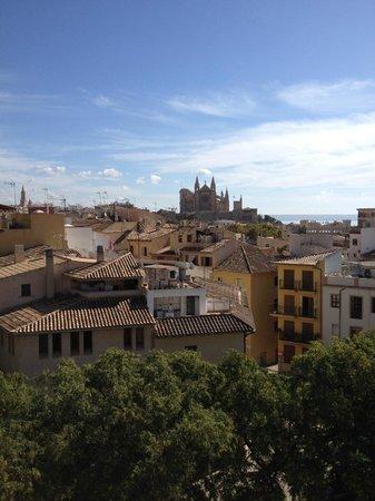 City Sightseeing Palma de Mallorca : Cathedral Palma De Mallorca