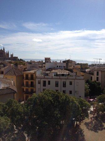 City Sightseeing Palma de Mallorca : vier from St Pere Boulard