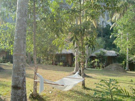 Ban Sainai Resort: 景色