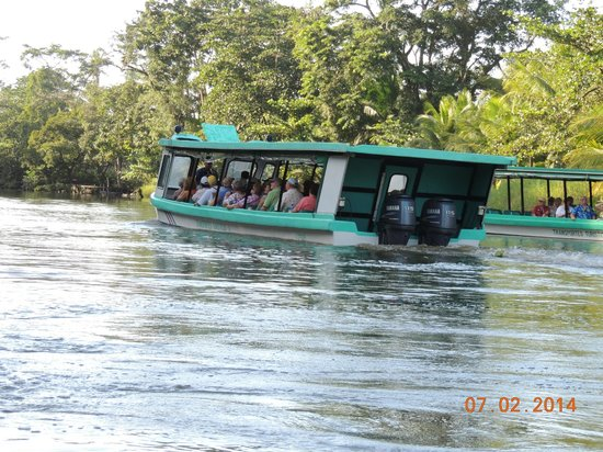 Tortuguero Canal: Another pontoon boat