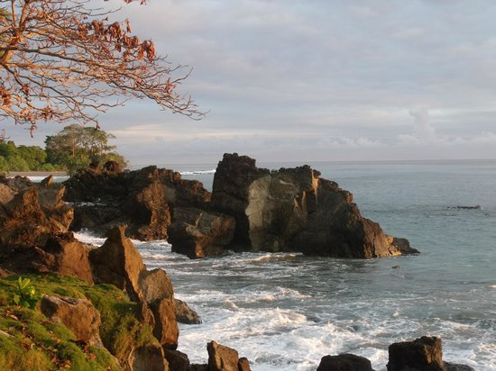 Tucan Terra: View from edge of garden