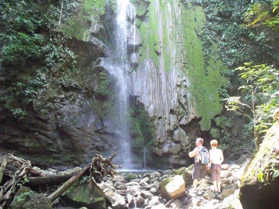 Tucan Terra: Waterfall we hiked to