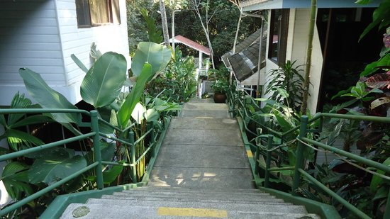 Hotel Mandarina: Hotel entrance