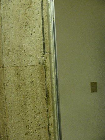 Hacienda Buenaventura Hotel & Mexican Charm All Inclusive: shower in room 108