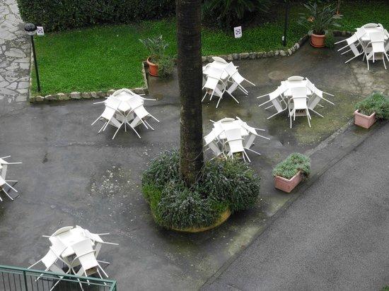 BEST WESTERN Hotel Regina Elena: giardino dalla camera