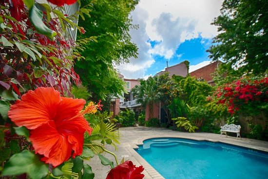 Lamothe House Hotel: Our Fabulous Courtyard and Pool Area