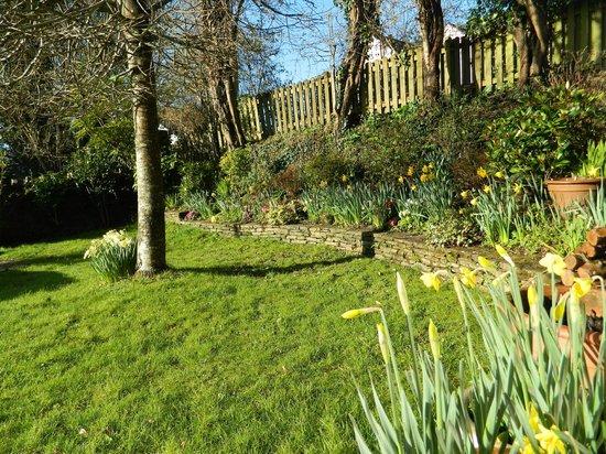 Barn Owl Bed and Breakfast: garden