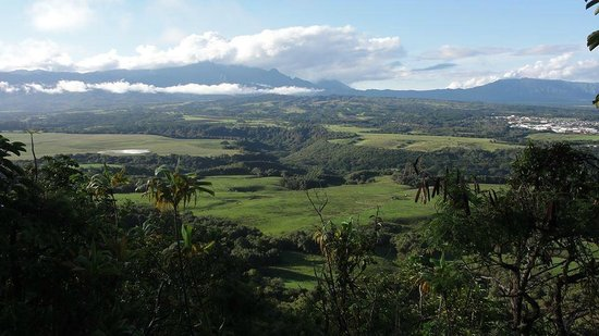 Kipu Ranch Adventures: View from the top of the mountain