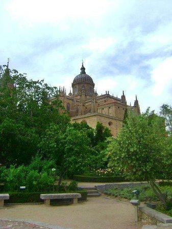 Jardín el Huerto de Calixto y Melibea: vista desde el huerto