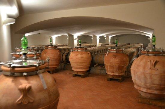 Fontodi Winery: Это, как нам пояснили, эксперимент