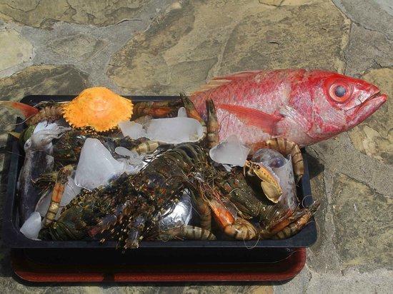 Severin Sea Lodge: Frischer Fisch im Imani Dhow Restaurant
