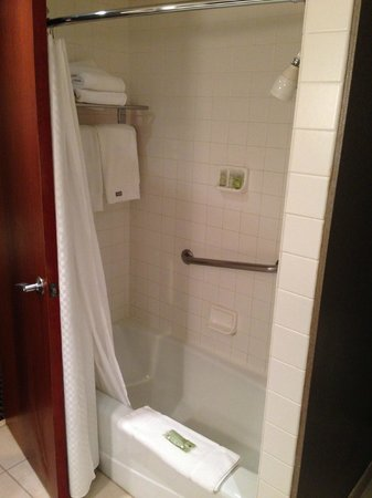 The Westin Southfield Detroit: shower for short people (nozzle very low)