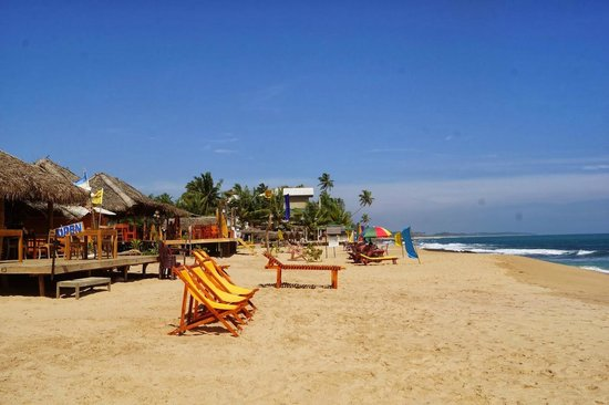 Picture Of Harmony Beach Bungalows, Tangalle