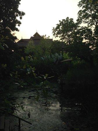 Oriental Siam Resort: Such lush grounds