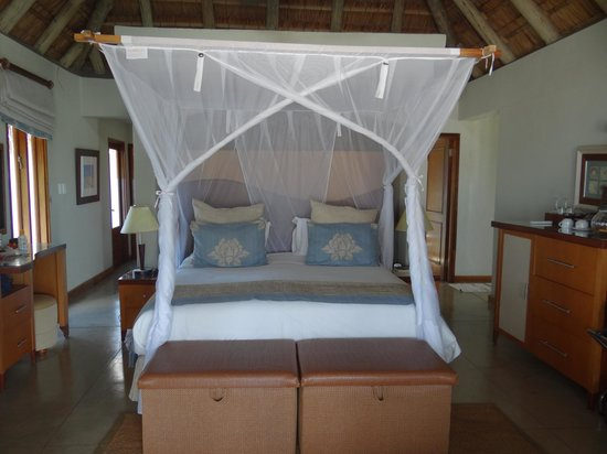 Dugong Beach Lodge : The Living/Bedroom