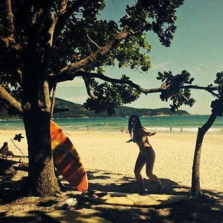 Lopes Mendes Beach : Vista sob as sombras das castanheiras da praia de Lopes mendes