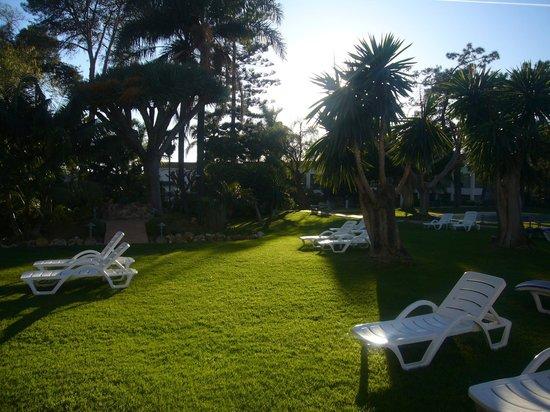 Los Monteros Spa & Golf Resort GL: Jardines