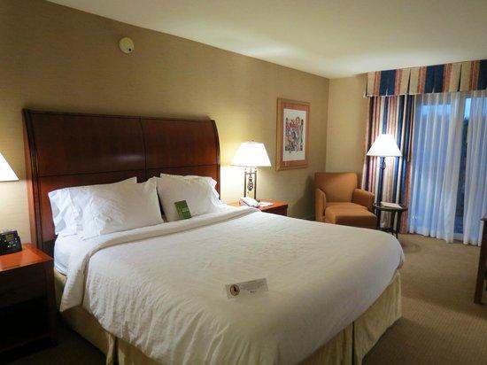Hilton Garden Inn Carlsbad Beach: King Room