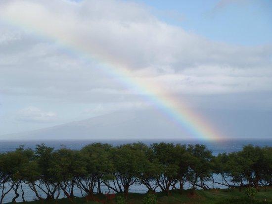 The Westin Kaanapali Ocean Resort Villas : After a brief shower