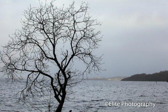 Lochside Guest House : Loch Lomond from Balloch