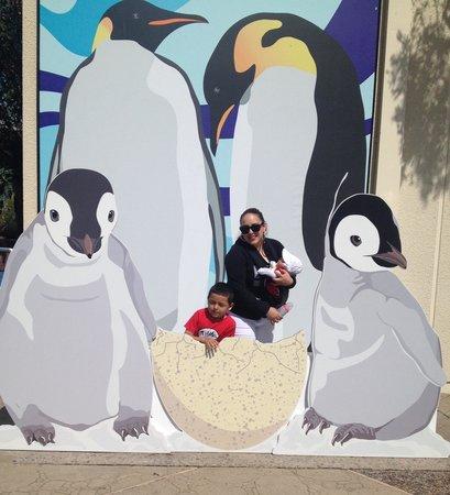 SeaWorld San Diego : =)