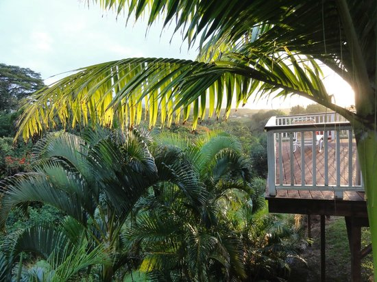 Kauai Banyan Inn: Sonnenaufgang vom Balkon