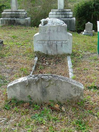 Wilmington Oakdale Cemetery: annie derossett - the first internment in cemetery