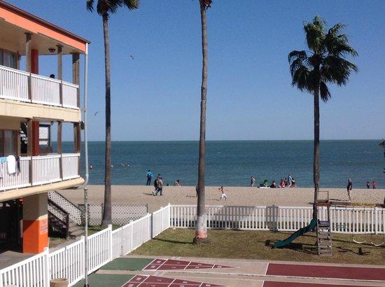 Sea Shell Inn Motel: View