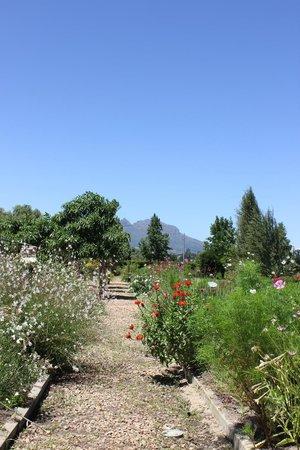 Vredenheim: garden 3