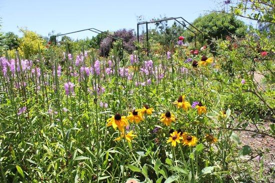 Vredenheim: garden 4