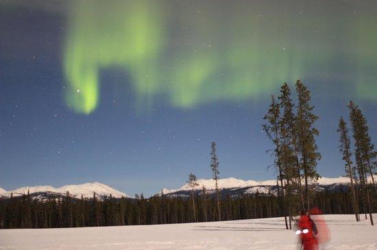Northern Lights Resort & Spa: Aurora Borealis