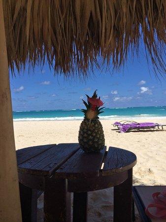 Paradisus Punta Cana Resort: Pina Colada