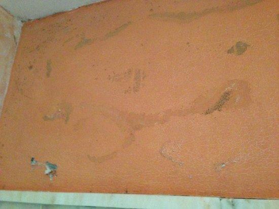 Hotel La Torre: Mouldy Wall