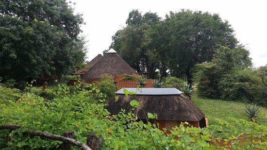 MalaMala Sable Camp: pool area