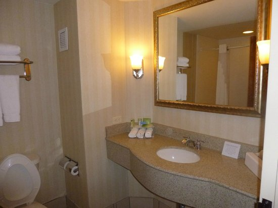 Holiday Inn Express Hotel & Suites Montgomery/Boyd Cooper Parkway: Bathroom